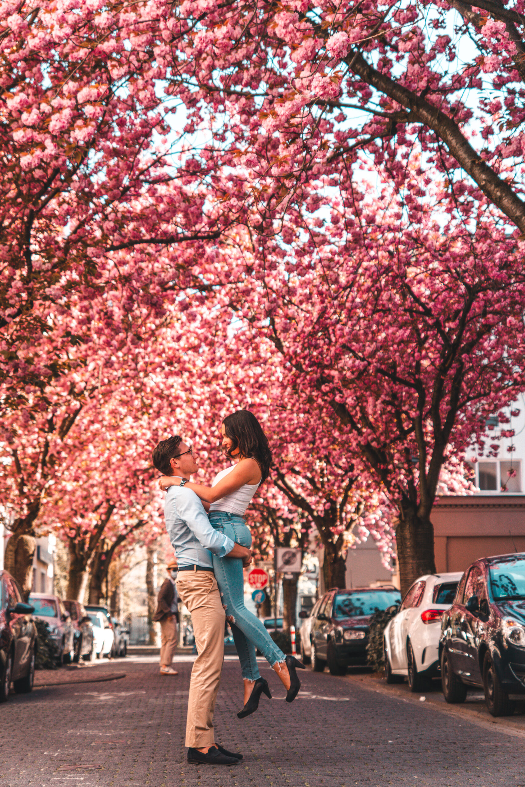 The Complete Guide to Cherry Blossoms in Bonn