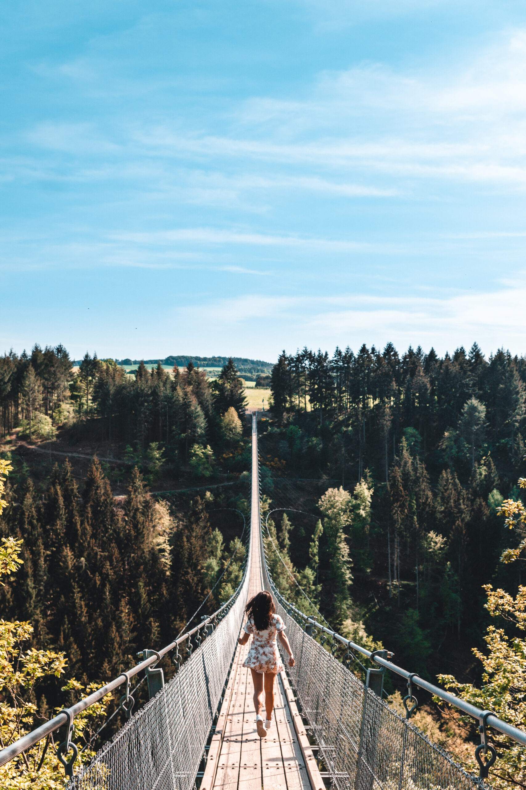 Geierlay Rope Bridge |Germany's Most Beautiful Bridge